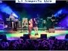 mellowlive_manuela-liotto-58
